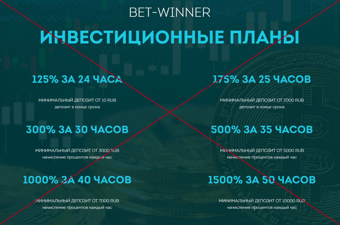 Отзывы о BetWinner. Проверка компании bet-winner.top
