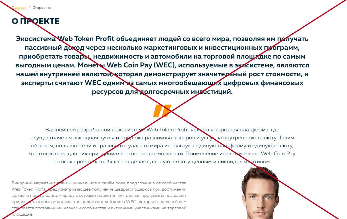 Web Token Profit (webtokenprofit.com) - отзывы и обзор. Развод?